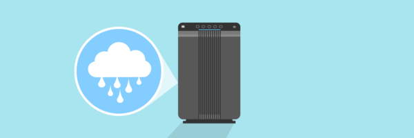 Do Air Purifiers Dry Out The Air