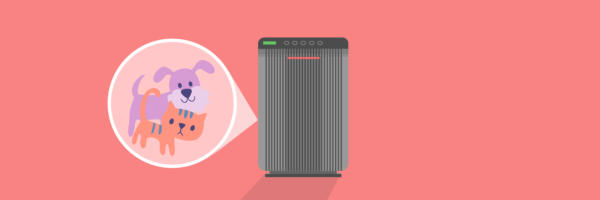 Do Air Purifiers Work For Pet Allergies