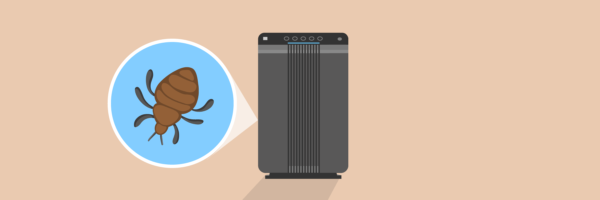 Do Air Purifiers Get Rid Of Dust Mites