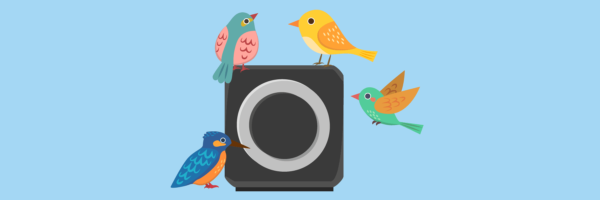 Best Air Purifier for Bird Owners