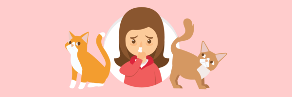 Can You Develop An Allergy To Cats Later In Life?