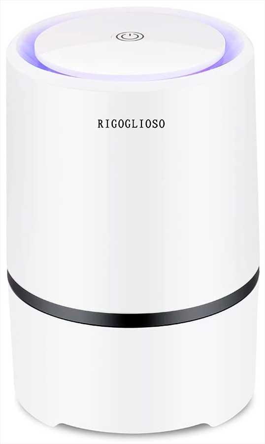 RIGOGLIOSO True HEPA Air Purifier