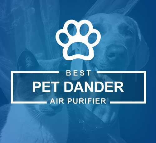Best Air Purifier for Pet Hair, Odors and Allergies related issue