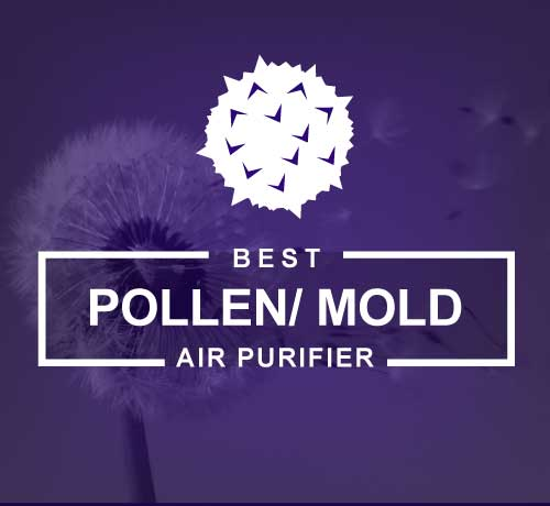 Best Air Purifier for Mold, Pollen, Mildew and Spores