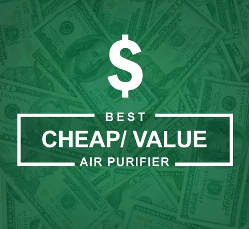 Best Value and Cheap Air Purifier that Actually Work