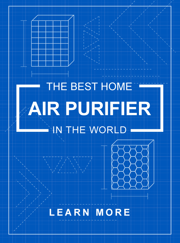 Best HEPA Air Purifier for Home